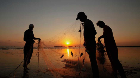 Fishermen are silhouetted against the setting sun while they clear their net after fishing at Karachi's Clifton beach November 16, 2011.